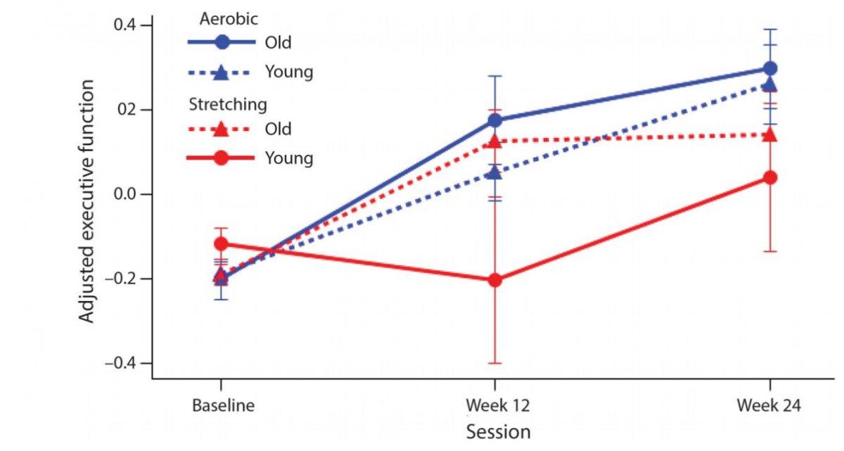 Прогресс обеих групп, разграниченных по возрасту; молодых и пожилых делили отметкой в 38 лет / ©Neurology