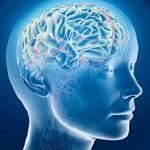 5 вещей, которые ускоряют работу мозга