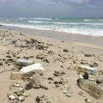 Пластиковая посуда на пляже